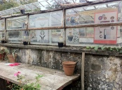 Serre Giardini Margherita